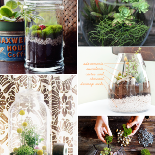 Make It Friday: DIY Terrariums via Idle Hands Awake