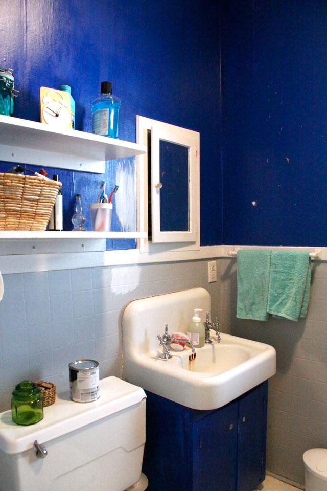 Cookie Monster Blue Bathroom || Jade and Fern