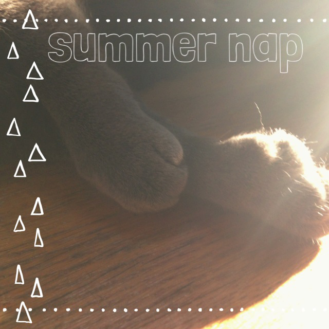 Summer Nap || Jade and Fern