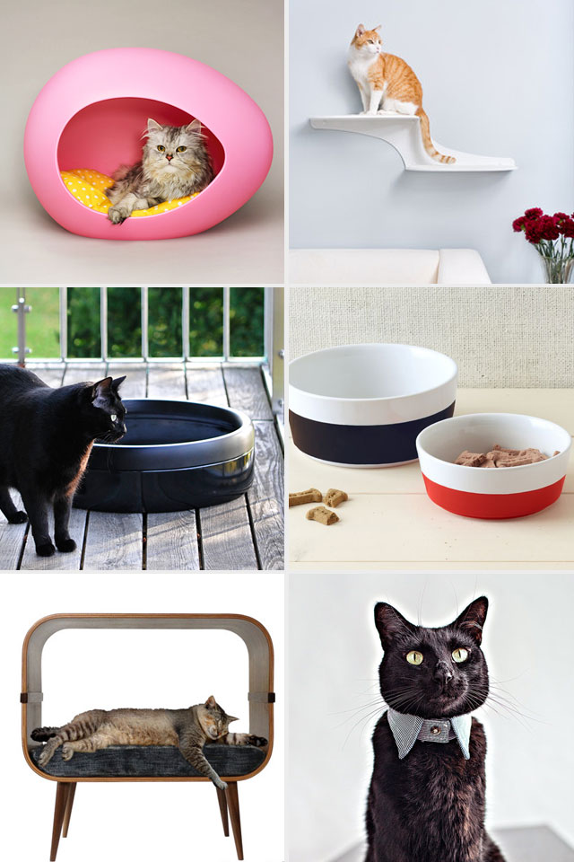 Gifts for Crazy Cat People || via Jade and Fern