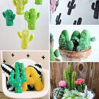 Cacti to DIY || via Idle Hands Awake