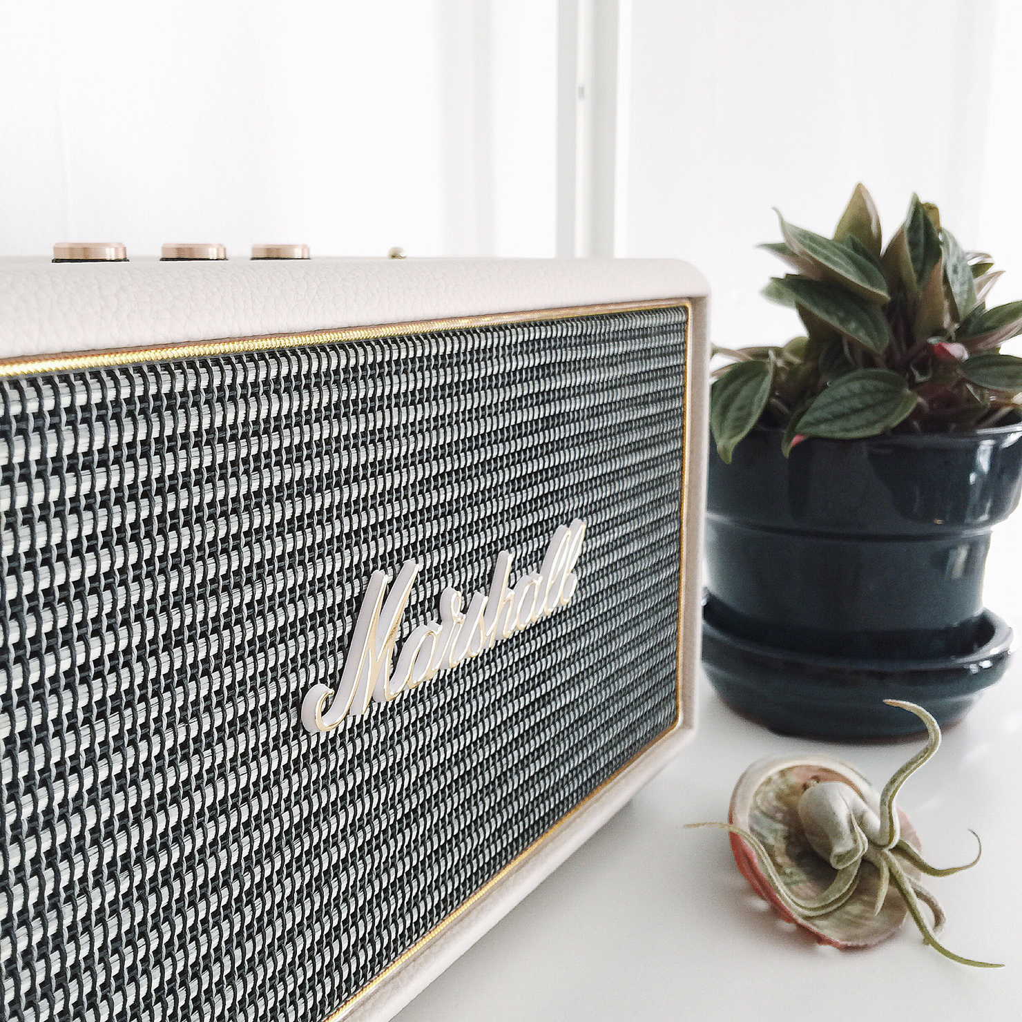 Marshall Acton speaker and a bunch of fun links! // Idle Hands Awake