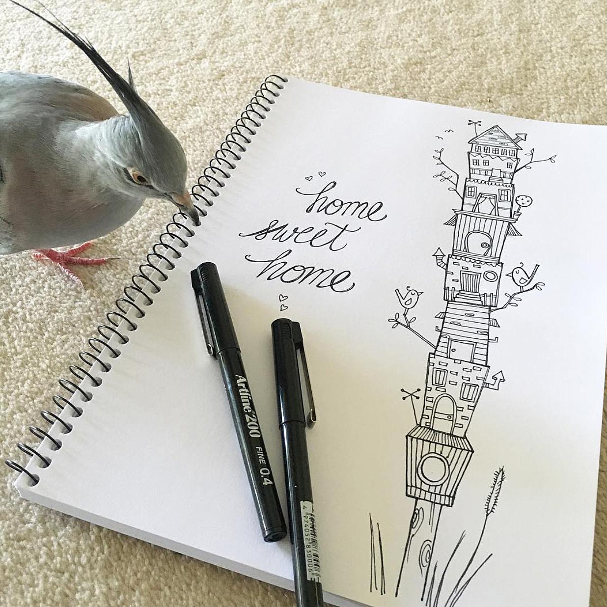 rebelchallenger-birdhouse