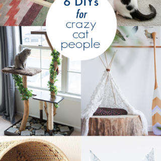 Crazy cat people unite! Check out these DIY cat projects that will make your feline friends purrfectly happy.