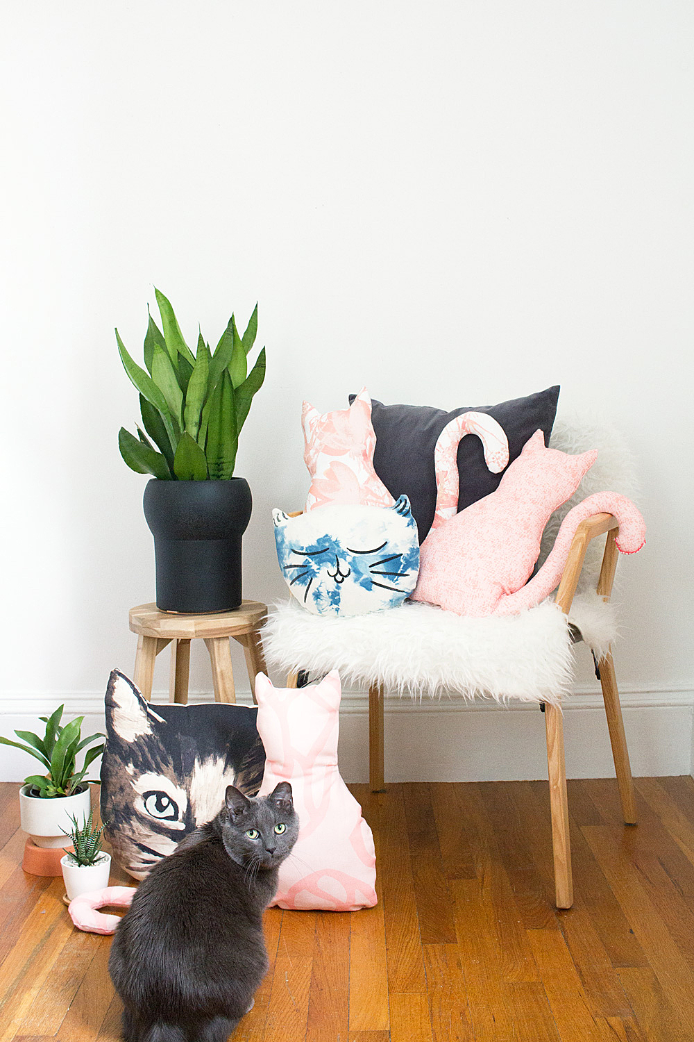 DIY No-Sew Cat Pillow @idlehandsawake