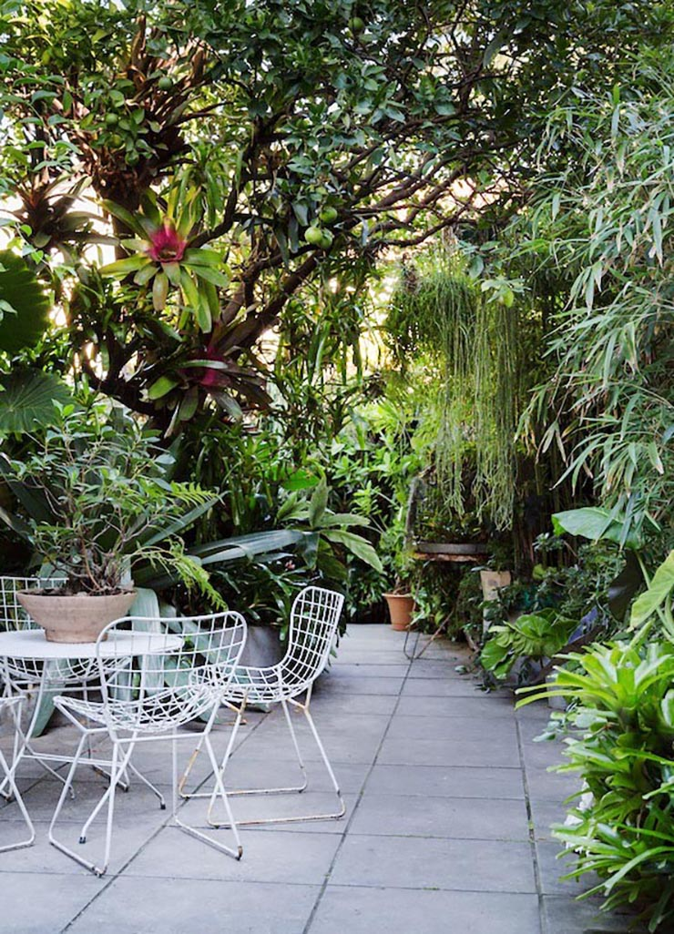 Photo via The Design Files - Eight Modern Urban Jungle Patios @idlehandsawake