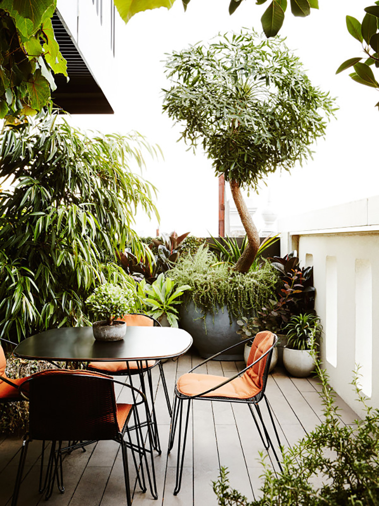 Eight modern urban jungle patios that are perfect for for Terrace plants